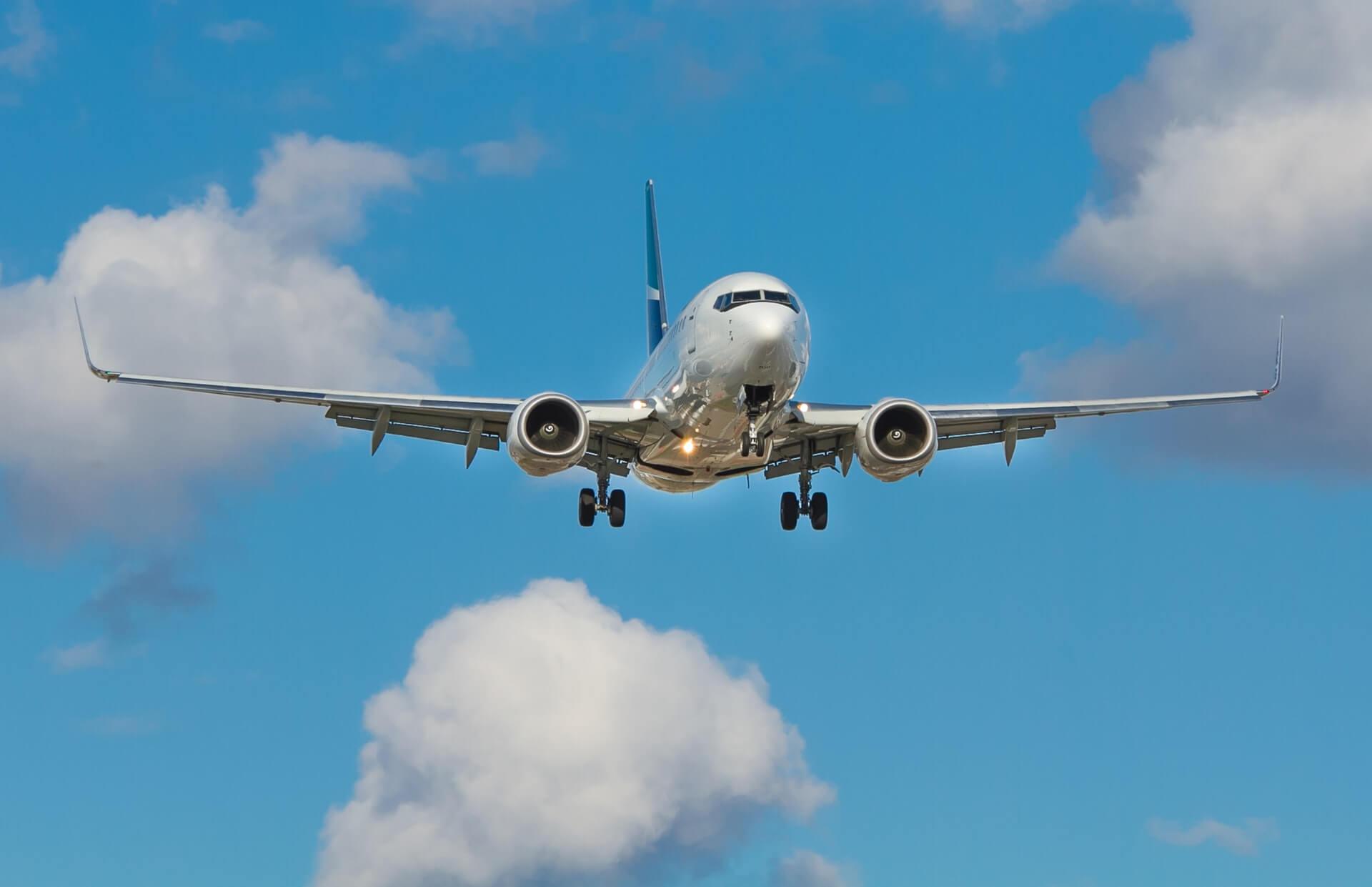 Flight Ban during Covid-19