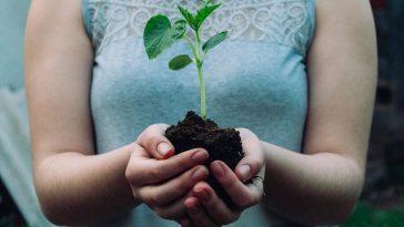 Eco-friendly Practices
