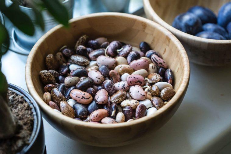 Bean Protocol